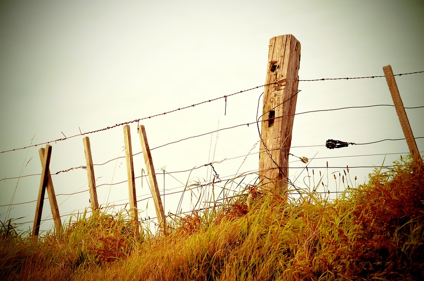 Zaun, Grenze